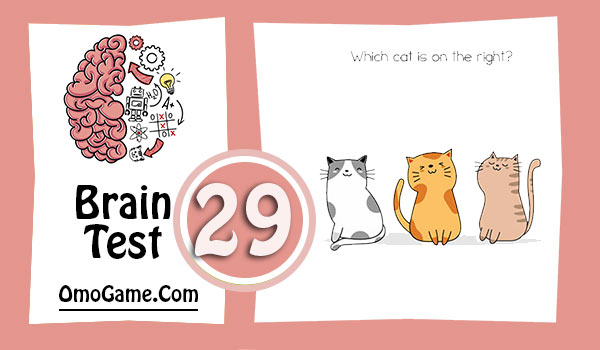 Brain Test Level 29 Which cat is on the right