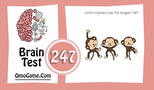 Brain Test Level 247 Which monkey has the longest tail