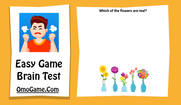 Easy Game Level 19 Which of the flowers are real