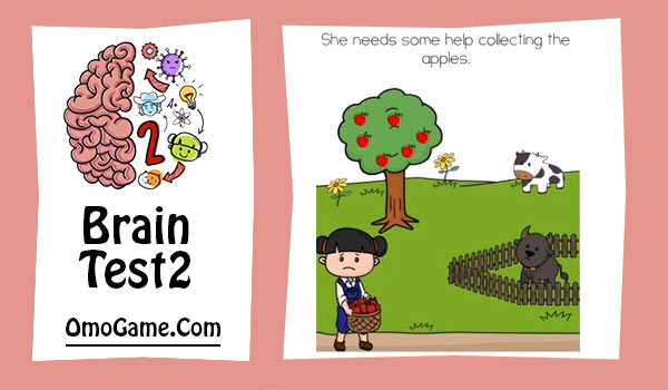 brain test 2 emily's farm level 11
