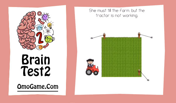 brain test 2 emily's farm level 15