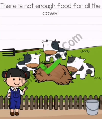 brain test 2 emily's farm level 5 answer